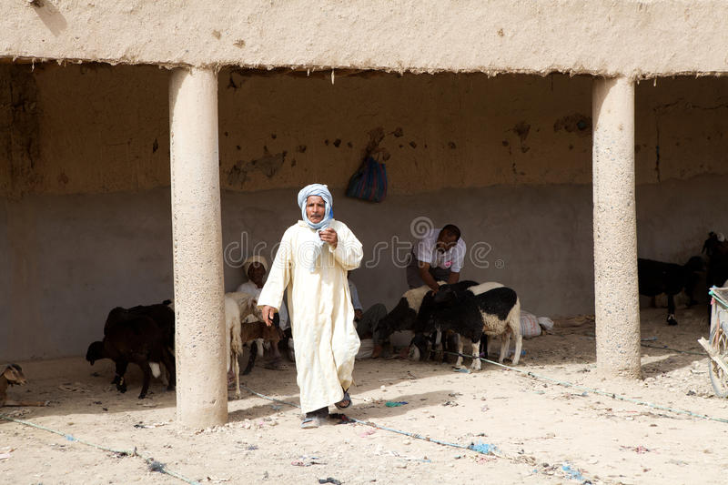 Download Berber goats market editorial photo. Image of african - 26792851