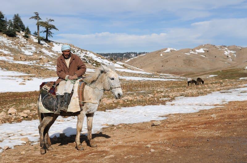 Berber marocchino immagini stock