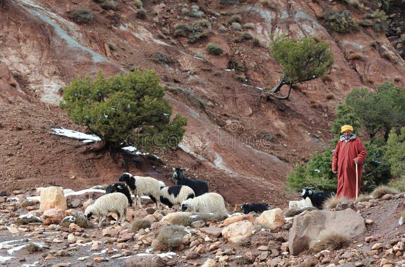 Berber marocchino 7 fotografia stock libera da diritti