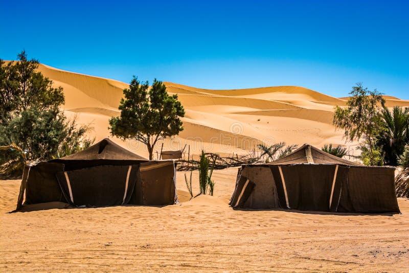 Berber namioty w pustyni Maroko, erg Chebbi blisko Merzouga fotografia stock