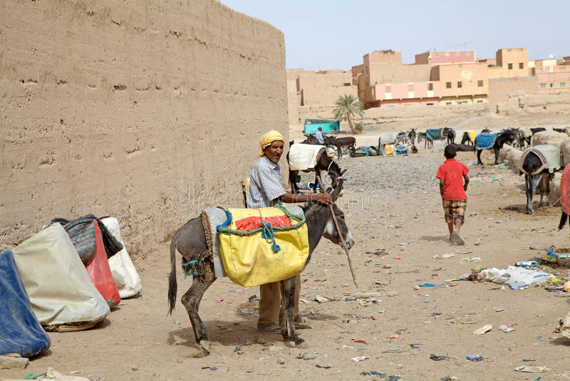 Berberman med åsnan fotografering för bildbyråer