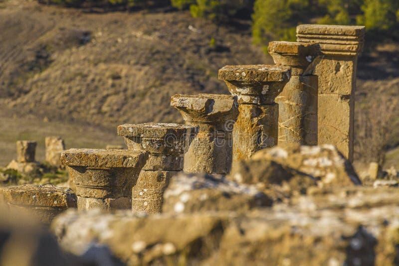 Cuicul. Berbero-roman ruins in cuicul & x28;djemila& x29;, in Algeria stock photo