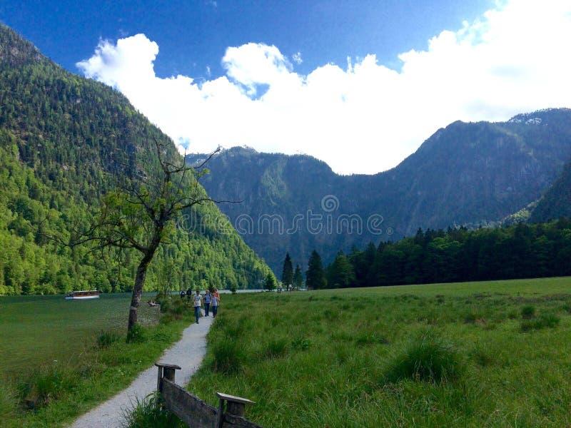 Berchtesgaden nationalpark royaltyfri fotografi