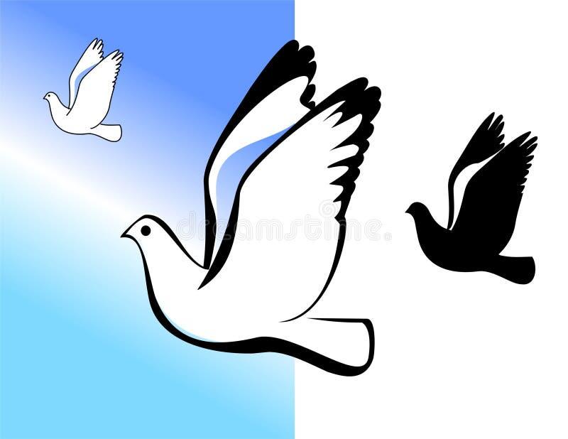Download Berd1 stock vector. Illustration of feather, memories - 9244189