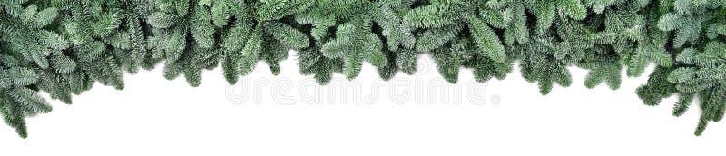 Bereifte Tannenzweige, breite Weihnachtsgrenze lizenzfreie stockbilder
