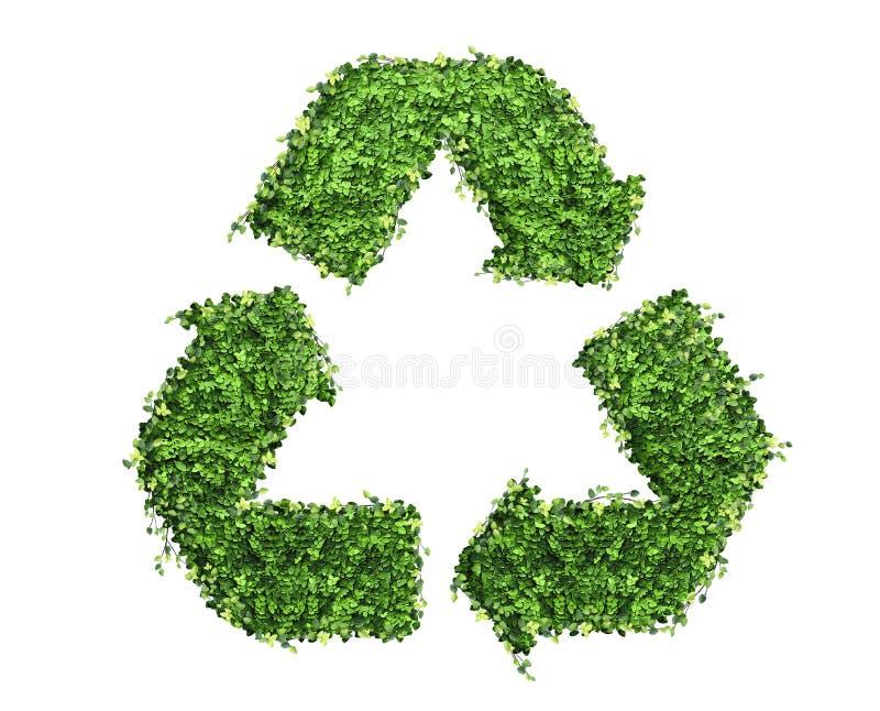 Bereiten Sie Logosymbol von vielen das grüne Blatt auf, lokalisiert auf Weiß lizenzfreie stockfotografie