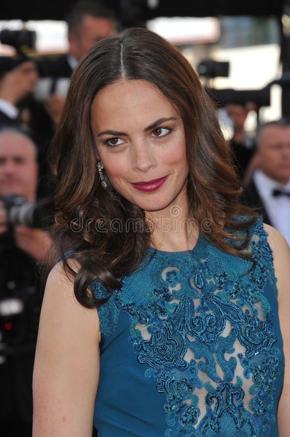 Berenice Bejo στοκ εικόνα