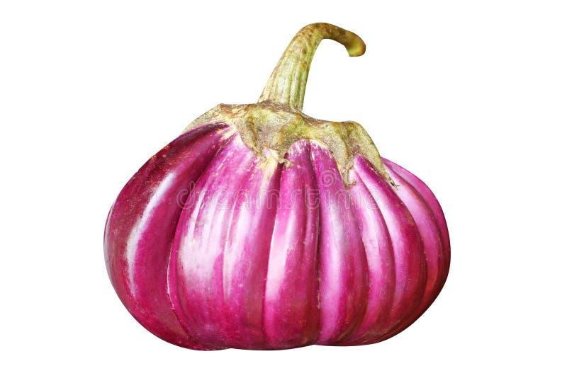 Berenjena púrpura fresca imagen de archivo