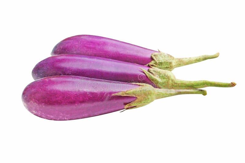 Berenjena púrpura fresca imágenes de archivo libres de regalías