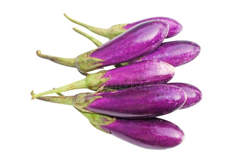 Berenjena púrpura fresca imagen de archivo libre de regalías