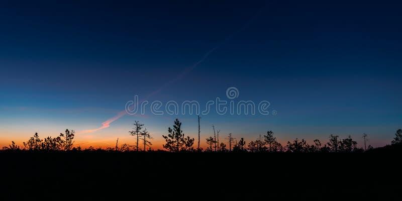 Berezinsky, riserva di biosfera, Bielorussia Autumn Dawn Landscape Wi immagine stock