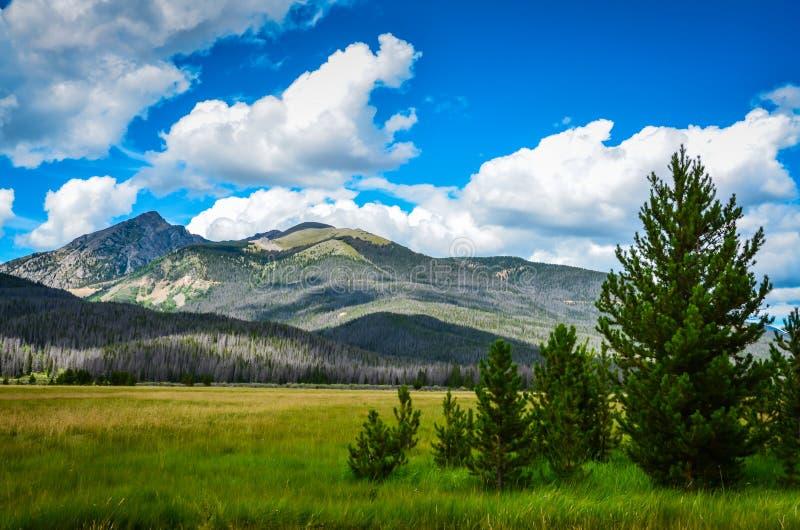 Bergäng - nationalpark för stenigt berg - Colorado arkivbilder