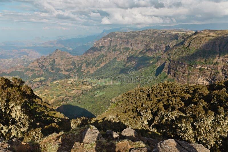 Berg in Äthiopien. stockbilder