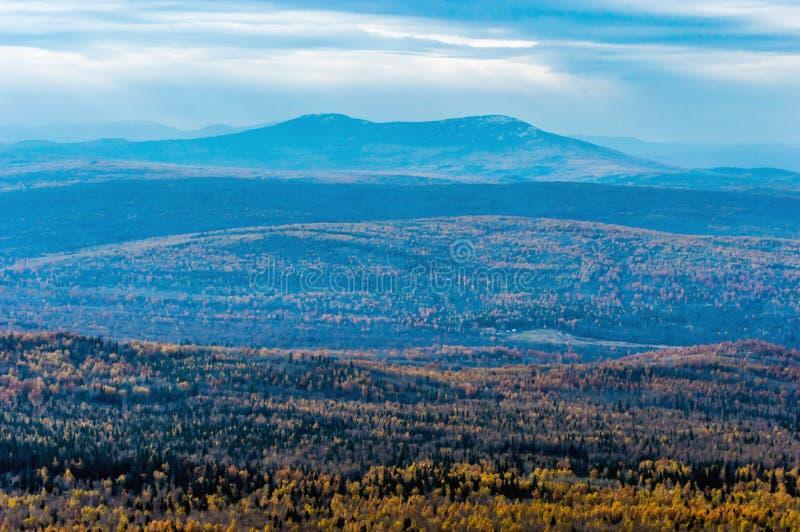 Berg über dem Herbstwald lizenzfreie stockbilder