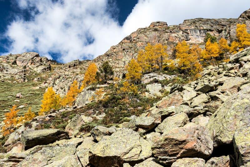 Download Berg stockbild. Bild von park, gras, grün, sommer, landwirtschaftlich - 47101375