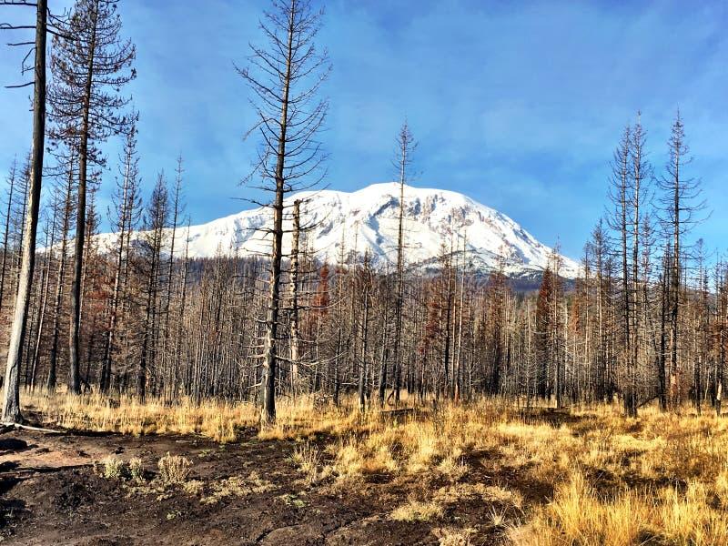 Berg Adams vom Puma-Nebenfluss-Feuer stockfoto