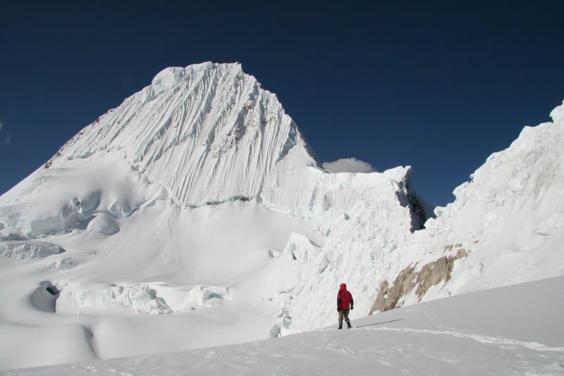 Berg Alpamayo royalty-vrije stock foto's
