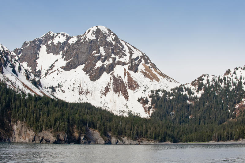 Berg auf alaskischer Küste lizenzfreies stockfoto
