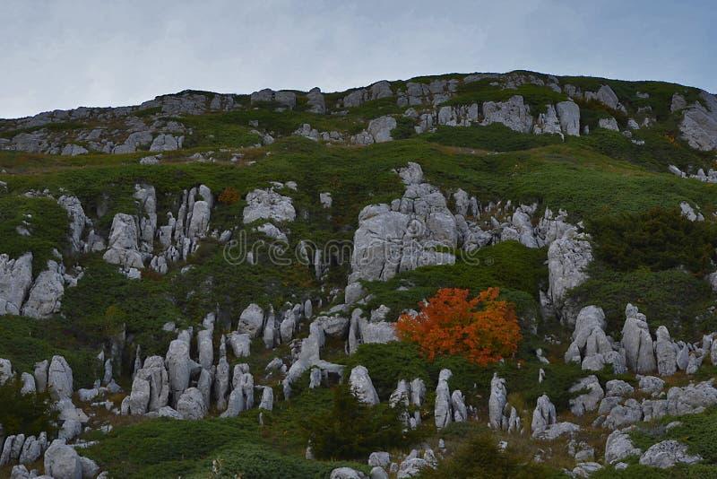 Berg av Crimea royaltyfri foto
