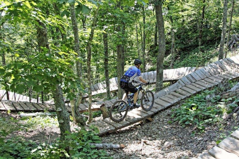Berg Biking royalty-vrije stock afbeelding