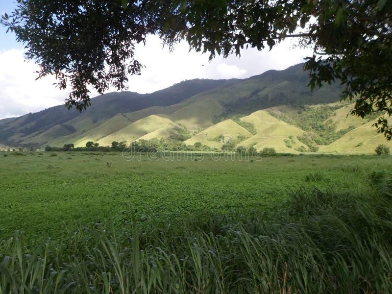 Berg Brasilien arkivbild