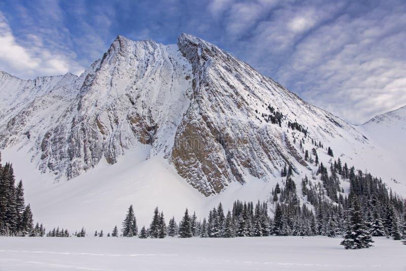 Berg Chester Kananaskis Country Alberta Canada stockfoto