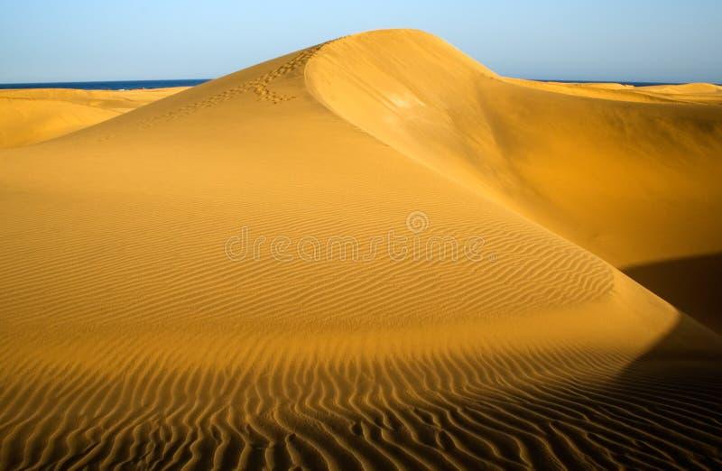 Berg in de woestijn van Maspalomas stock foto's