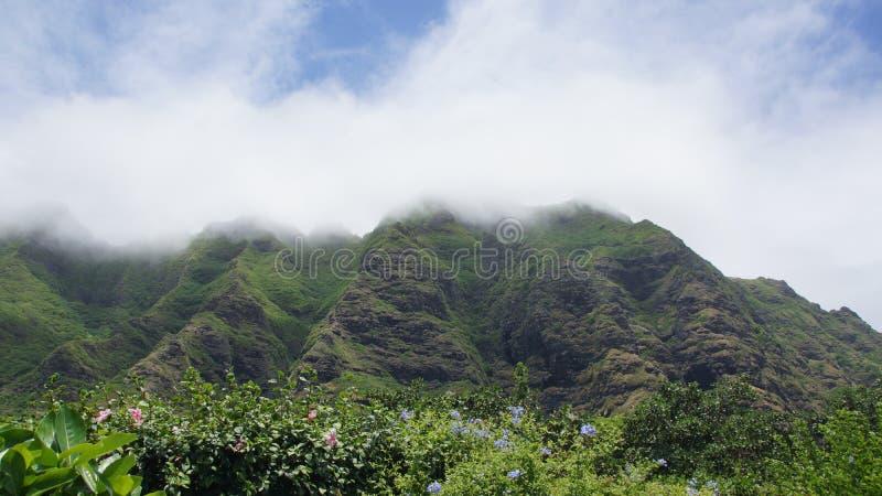 Berg in de wolken royalty-vrije stock fotografie