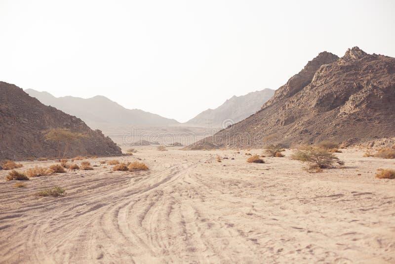 Berg in der Wüste stockbild