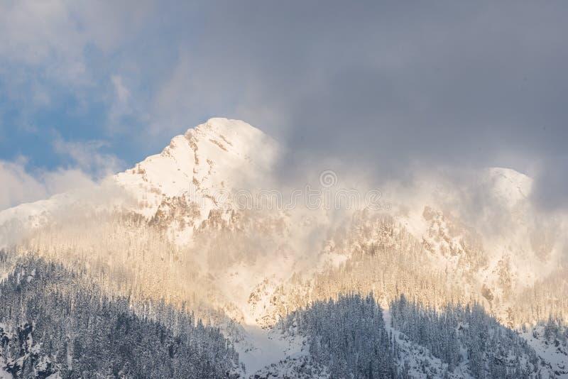 Berg die door sneeuw onder zonsopganglicht wordt behandeld stock afbeelding