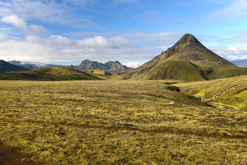 Berg door groen mos in het Nationale Park van Landmannalaugar, IJsland wordt behandeld dat stock afbeelding