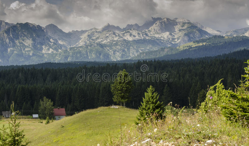Berg Durmitor in Montenegro stockbilder