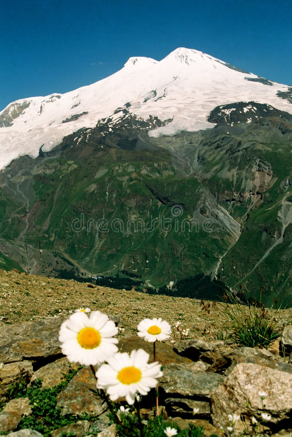 Berg Elbrus. royalty-vrije stock foto
