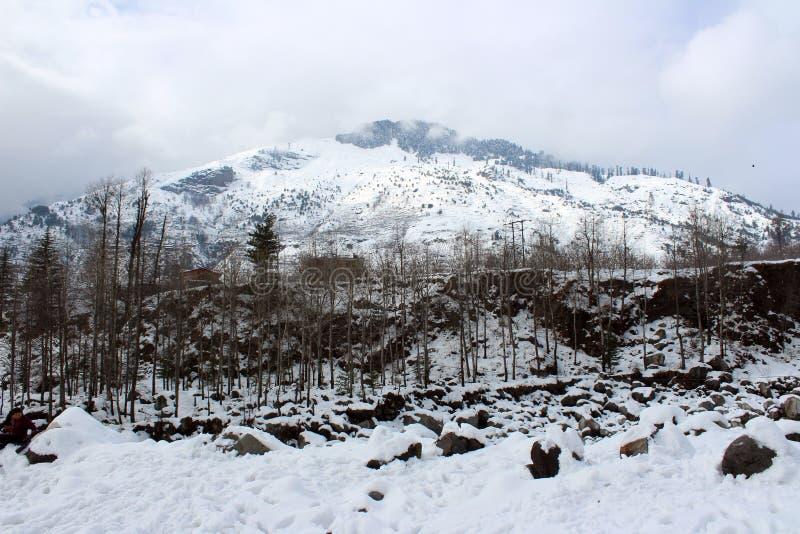 Berg en boom van de Stad van Manali Himachal Pradesh in India stock afbeeldingen