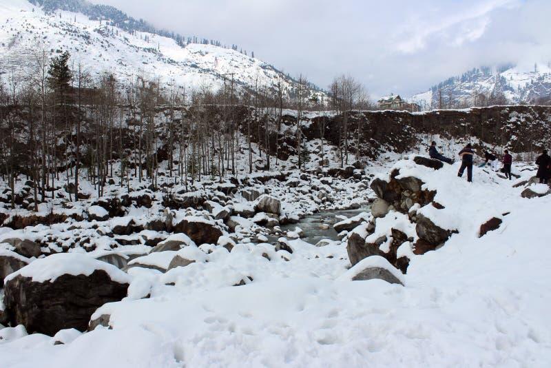Berg en boom van de Stad van Manali Himachal Pradesh in India royalty-vrije stock fotografie