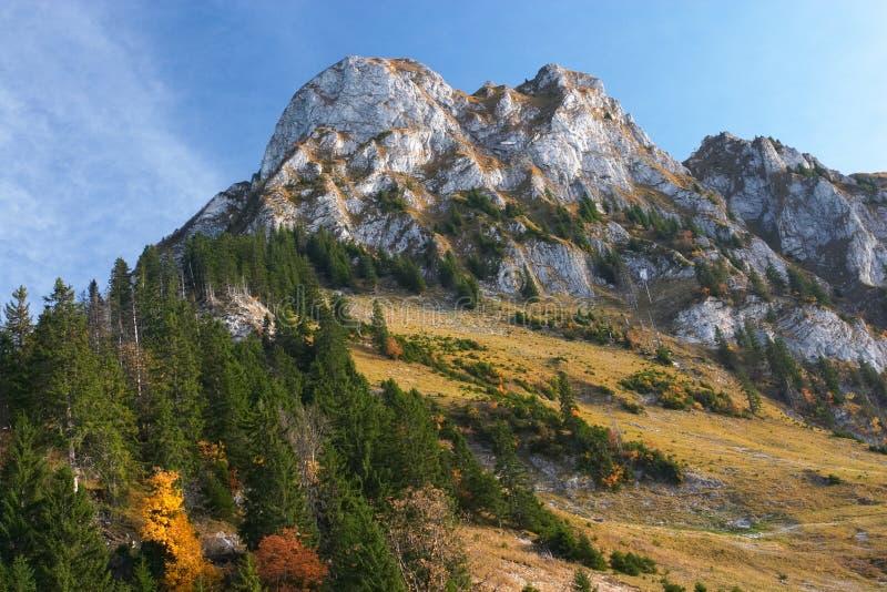 Berg en de herfstbos in het Juragebergte royalty-vrije stock foto