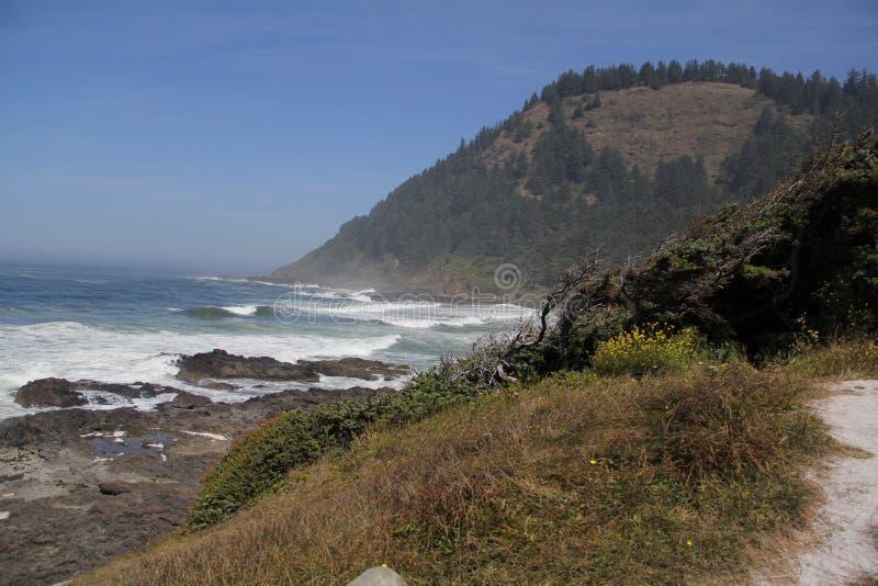 Berg en golven die op rotsachtig strand verpletteren stock foto's