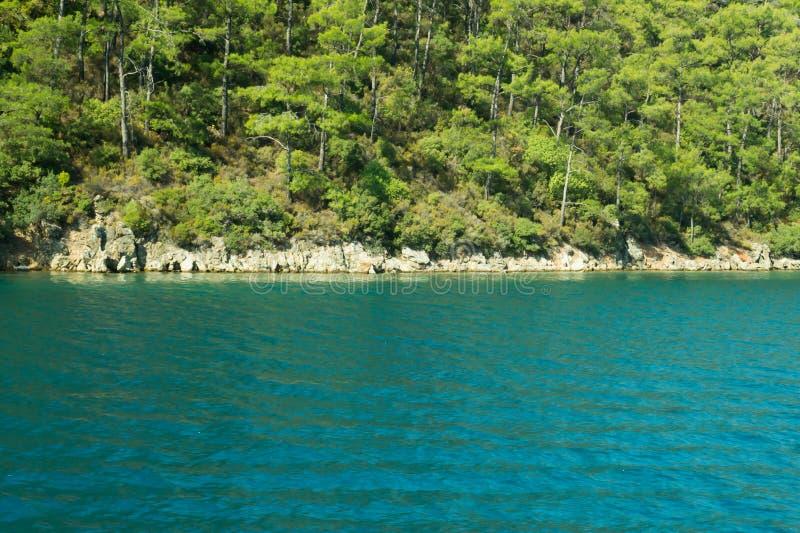Berg en Overzees kustlijn met de bos en rotsachtergrond royalty-vrije stock foto