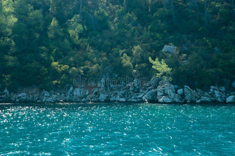 Berg en Overzees kustlijn met de bos en rotsachtergrond royalty-vrije stock afbeeldingen