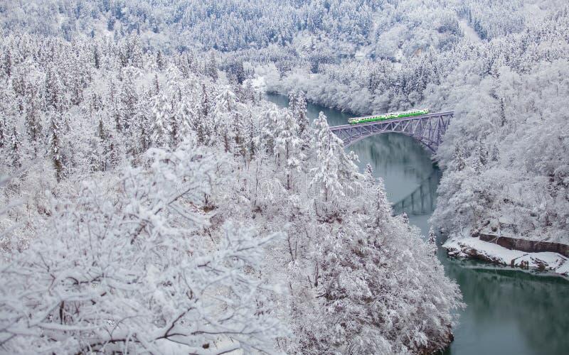 Berg en sneeuw met lokale trein stock foto's