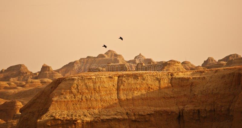 Berg en vogels royalty-vrije stock foto's