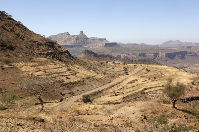 Berg Etiopien arkivfoto