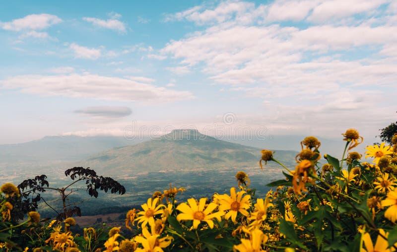 Berg för Phu PA Po arkivfoton