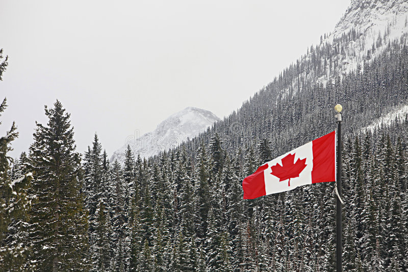 berg för skog för Kanada flaggaflyg över arkivfoto