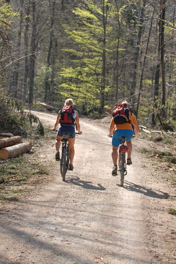 Berg-fiets familie stock afbeelding