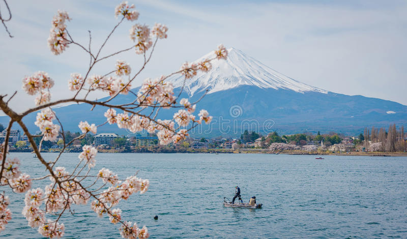 Berg Fuji in de lente, Kersenbloesem Sakura royalty-vrije stock afbeelding