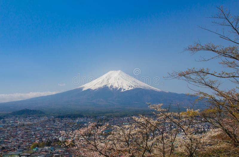 Berg Fuji in de lente stock afbeeldingen