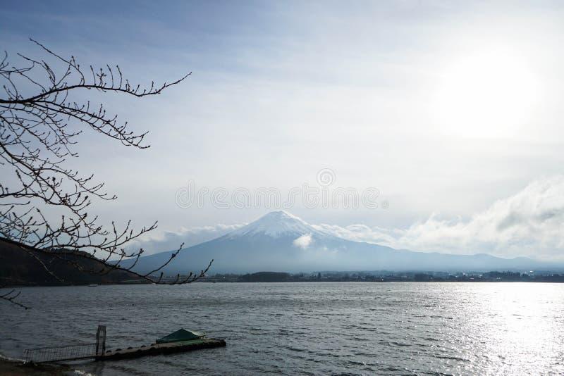 Berg Fuji in de middag royalty-vrije stock fotografie