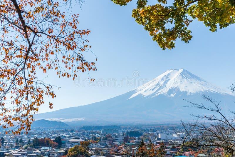 Berg Fuji en esdoornboom royalty-vrije stock foto's