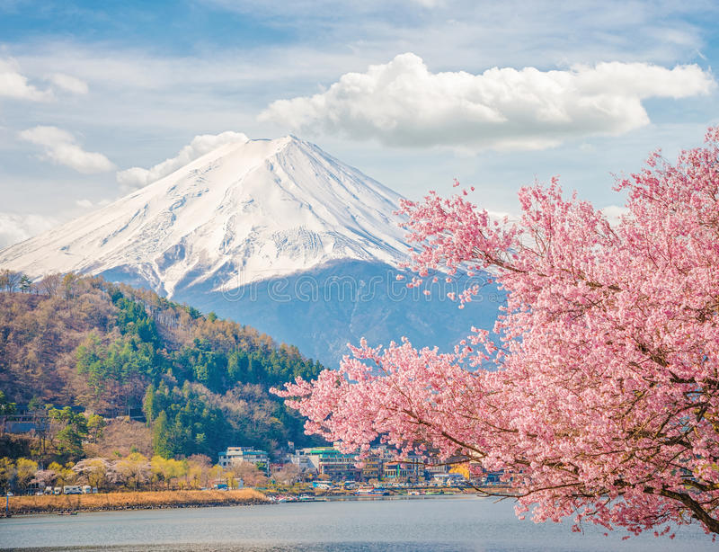 Berg Fuji im Frühjahr, Kirschblüte Kirschblüte stockfoto